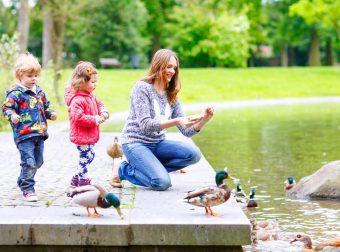 jak uczyć dziecko o przyrodzie
