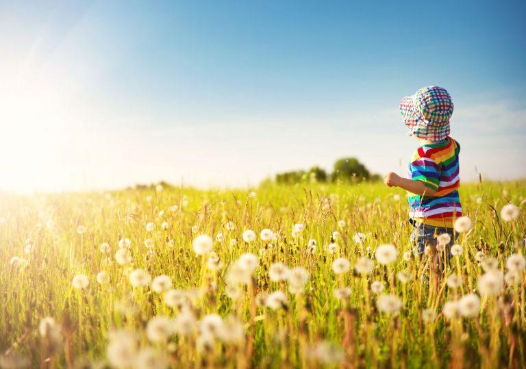 Ekoempatia - jak rodzice mogą wpływać na wychowanie ekologiczne dzieci? Dziecko na łące
