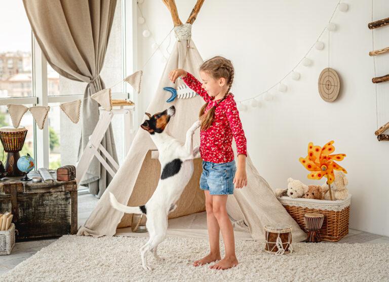 jak nauczyć dziecko dbania o pupila, dziewczynka bawi się z psem