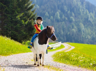 chłopiec jedzie na koniu